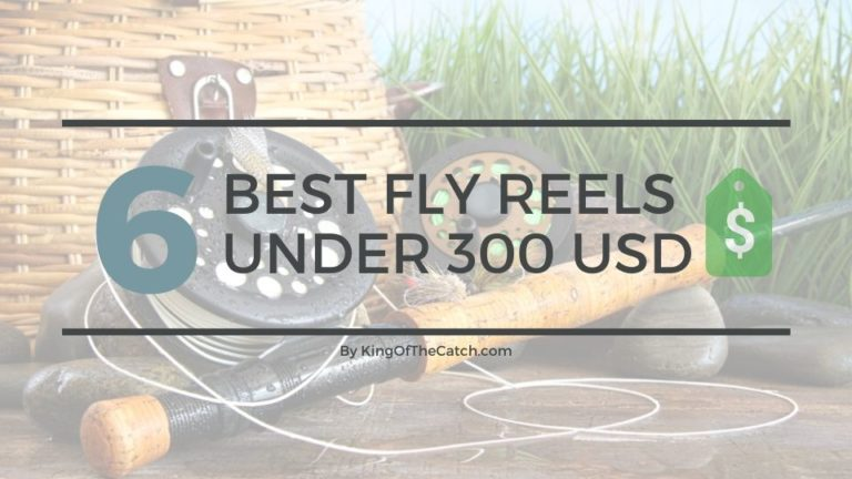 best fly reels under 300