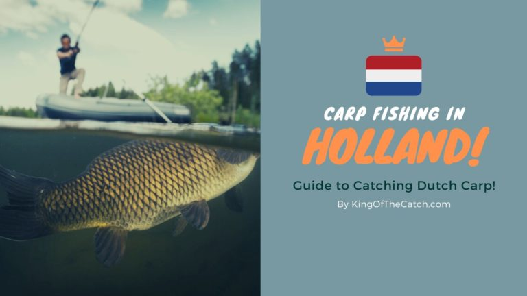 carp fishing holland