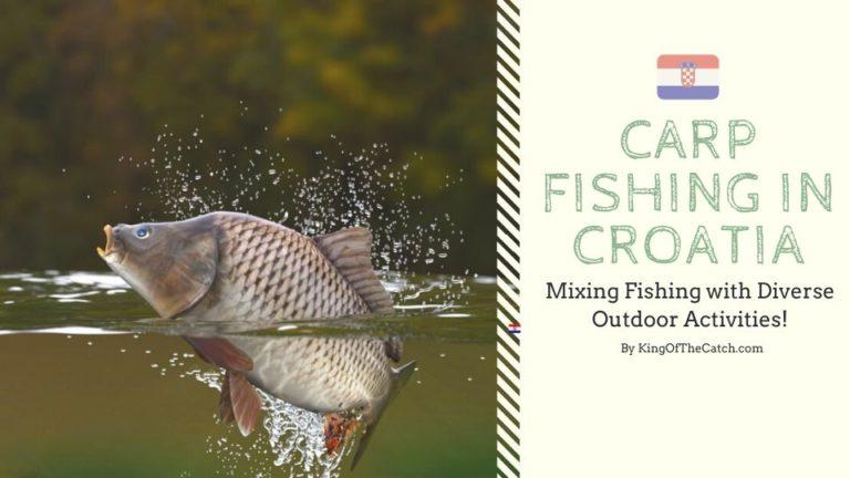 carp fishing croatia