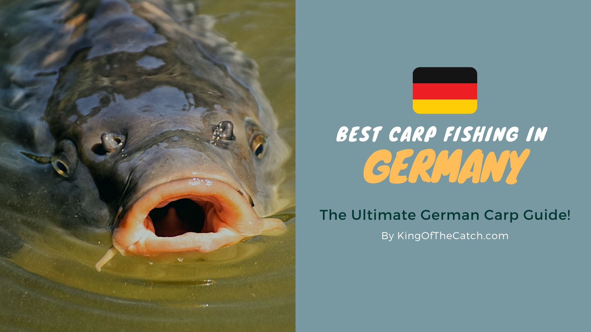 Carp Fishing In Germany Beer Bratwurst And Big Carp