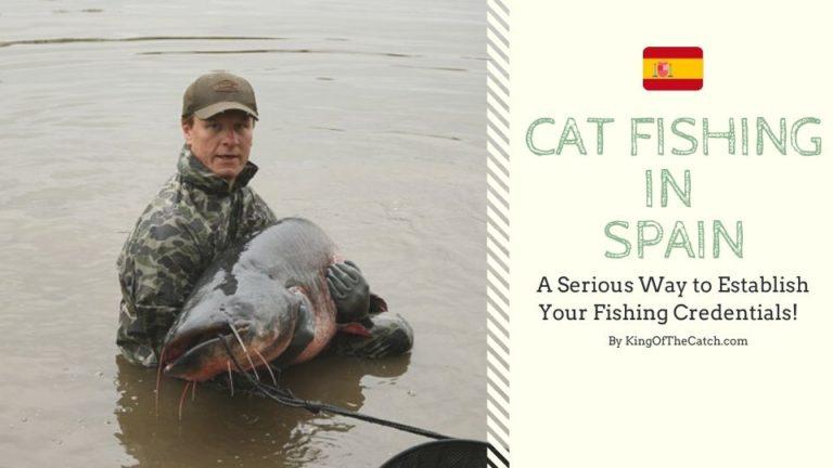 catfish fishing spain
