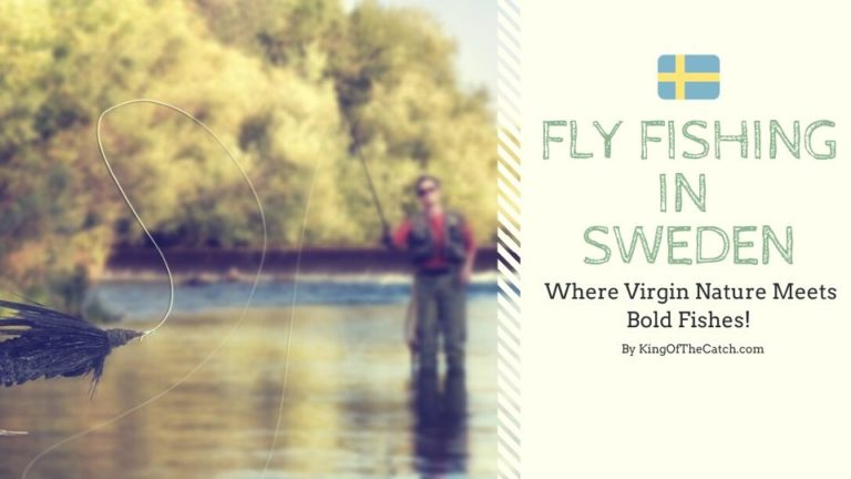 fly fishing sweden