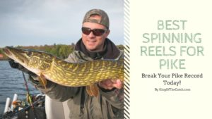 spinning reels for pike