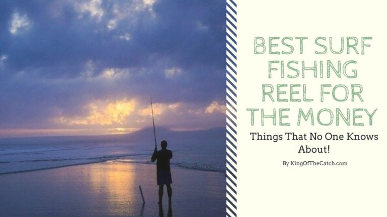 best surf fishing reel for the money