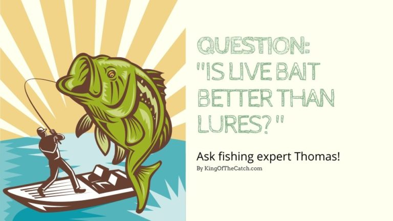 Is live bait better than lures