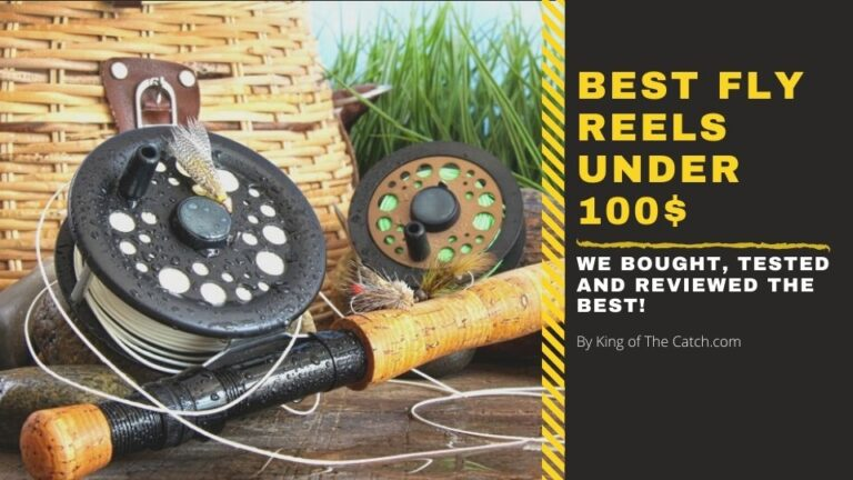 best fly reel under 100