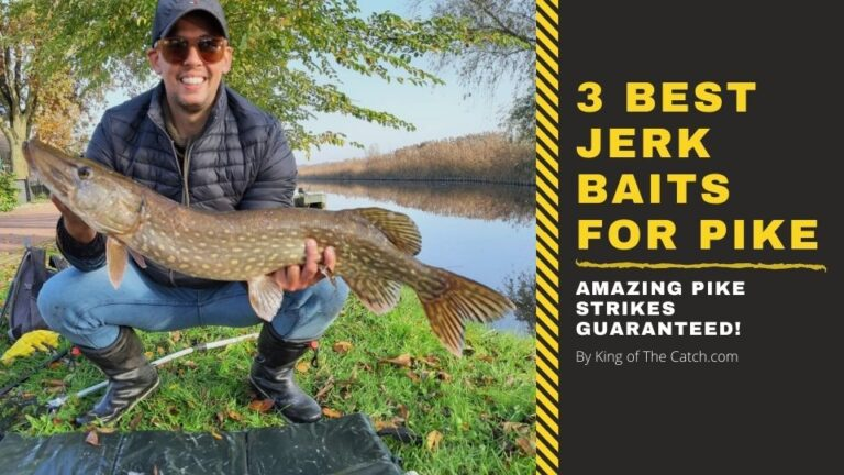 best jerkbaits for pike fishing