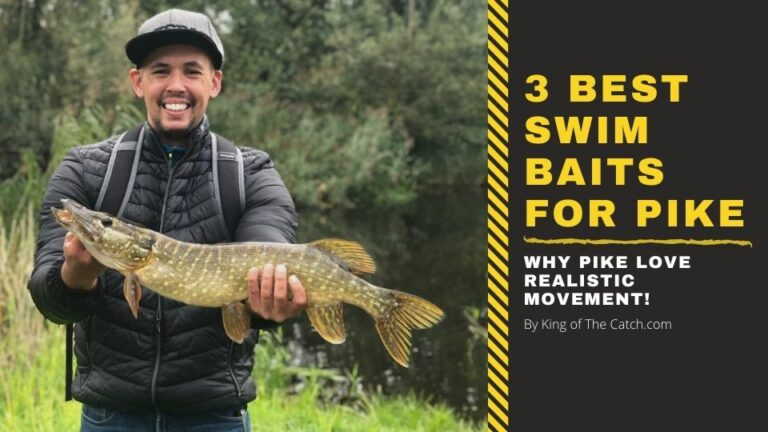 best swim baits for pike