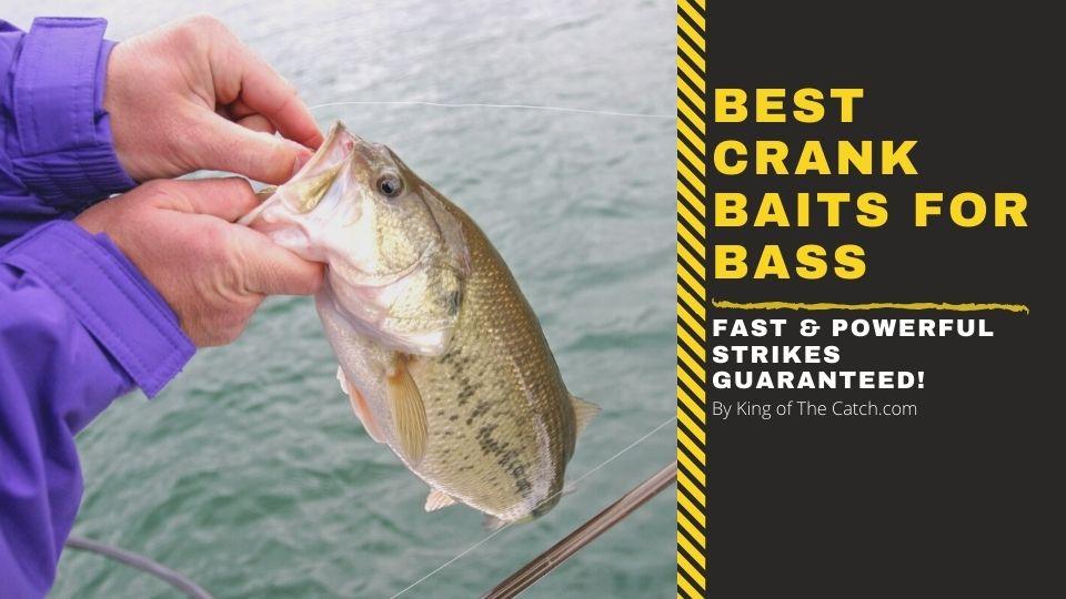 best crankbaits for bass