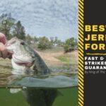 best jerkbaits for bass
