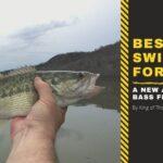best swimbaits for bass