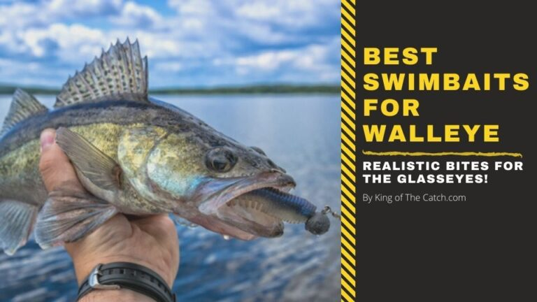 best swimbaits for walleye