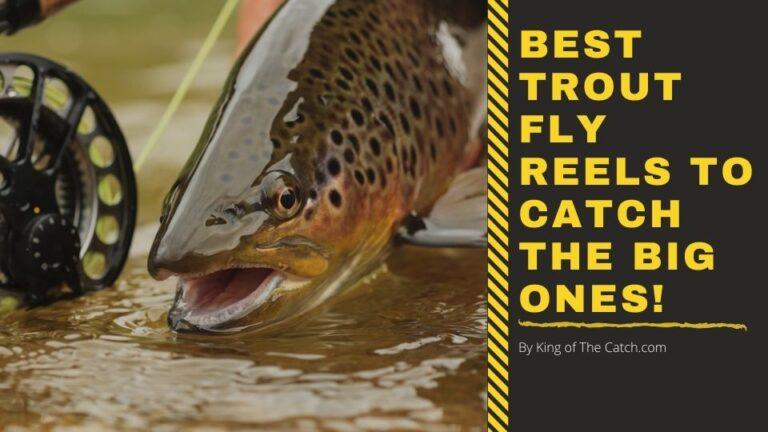 best trout fly reels
