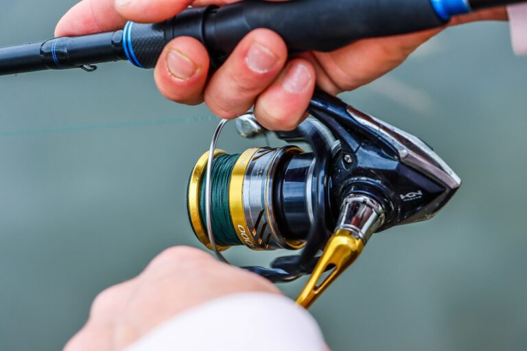 What Is The Best Gear Ratio For A Fishing Reel?
