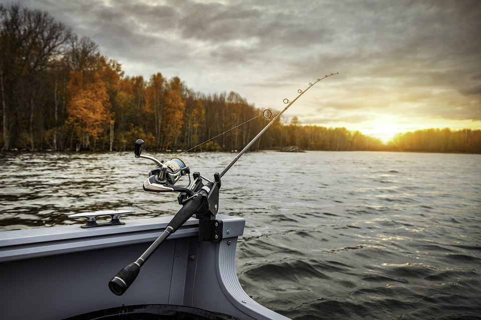 How Do I Choose The Right Action For My Fishing Rod